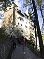 Bran Castle Bran Romania (22395202444).jpg