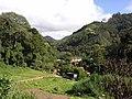 Brasil Rural - panoramio (48).jpg