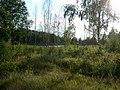 Braslaw District, Belarus - panoramio - alinco fan (20).jpg