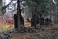 Brattfors IMG 4215.JPG