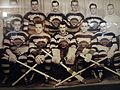 Brighton Tigers Ice Hockey Team.jpg