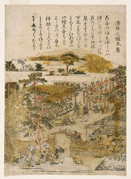 File:Brooklyn Museum - Some-i no uekiya (Gardens of Some-i) - Kitao Shigemasa.jpg