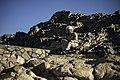 Builders of Sinai 03.jpg