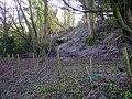 Bullington - Chalk Quarry - geograph.org.uk - 672841.jpg