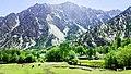 Bumburet Valley - Kalash.jpg
