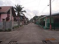 Burgos Street in Brgy.R.magsaysay, Unisan - panoramio.jpg
