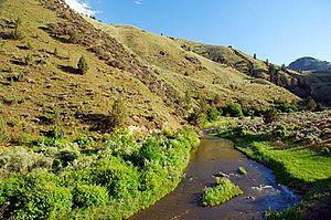 Burnt River (Oregon) - Image: Burnt River Canyon (Baker County, Oregon scenic images) (bak DA0050a)