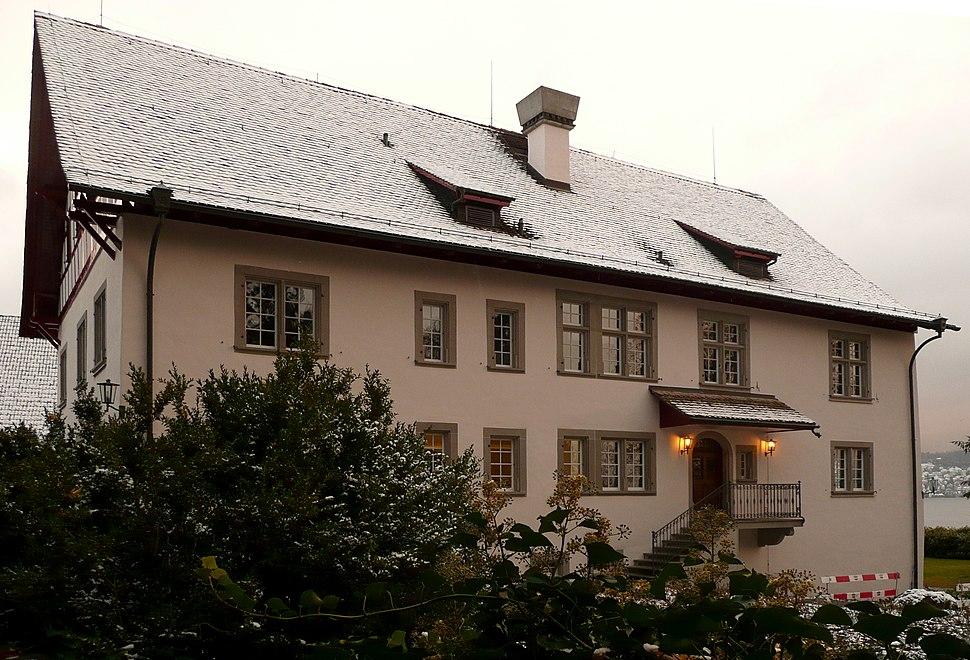 C. G. Jung institute