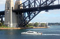 CSIRO ScienceImage 7996 Charter boat on Sydney harbour.jpg