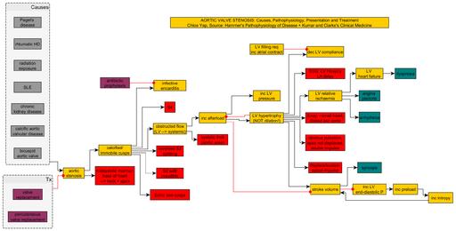 CVS Aortic Stenosis Hammer KumarandClarke