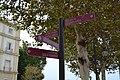 Callejeando por Cádiz (36989146531).jpg
