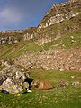 Camp below the cliffs of west Eigg - geograph.org.uk - 199920.jpg