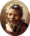 Carel Fabritius - Head of a Bearded Man NML WARG WAG 959.jpg