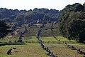 Carnac, megalitické řady Kermario - panoramio.jpg