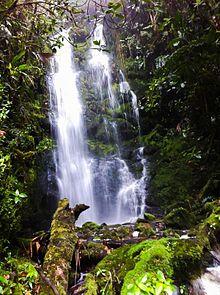 Cascada wikipedia la enciclopedia libre for Cascadas de jardin fotos