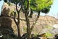 Castillos de Guayana (Casacoima - Delta Amacuro) 2.jpg