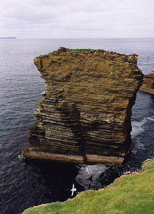 Stroma, Scotland -  alt=View of a rocky pinnacle standing in the sea, with many seabirds on and around it