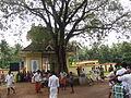 Century Club Onaghosham, Choorakkattukara IMG 8723.JPG