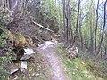 Chamonix, France - panoramio (67).jpg
