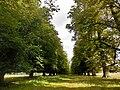 Charlecote park - panoramio (3).jpg