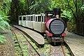 Charleston Nile River Rainforest Train.jpg