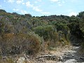 Chemin à Conchiglio (6).jpg