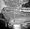 Chevrolet Nova Deathproof.jpg