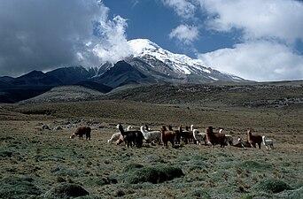 Chimborazo2004.jpg