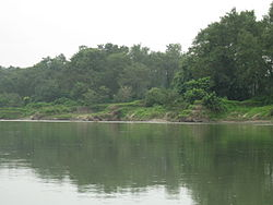 Chitwan National Park (2010)-21.jpg