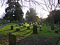 Churchyard, St Peter's, Limpsfield, Surrey - geograph.org.uk - 1134499.jpg