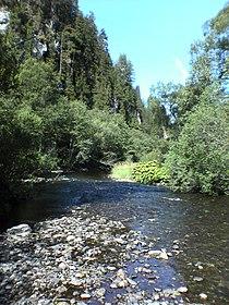Cierny Vah River3.JPG