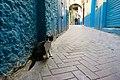 Citizen of Tangier-6.jpg