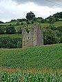 Clodah Castle near Crookstown - geograph.org.uk - 499913.jpg