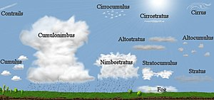 Cloud - Genus classification by altitude of occurrence. Multi-level types not limited by altitude include the two main precipitating clouds, cumulonimbus and nimbostratus.  The latter has been horizontally compressed in this depiction.