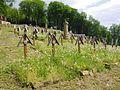 Cmentarz wojenny nr 123 – Łużna-Pustki PC12 (11).jpg
