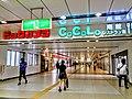CoCoLo Niigata Minami 2018.jpg