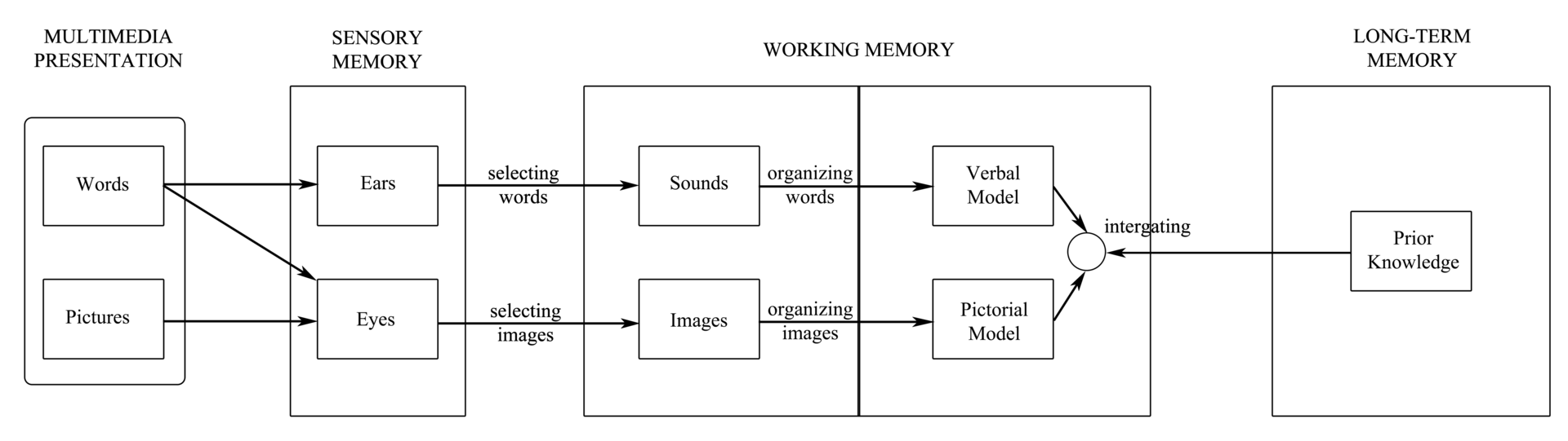 Modell der Cognitive Theory of Multimedia Learning