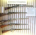 Contract Carbines from case 10 of the Springfield Armory Museum.jpg
