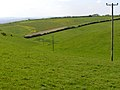 Coombe between The Grey Mare and Her Colts and Kingston Russell stone circle - geograph.org.uk - 179237.jpg