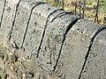 Copper slag, Kelston Park - geograph.org.uk - 706939.jpg