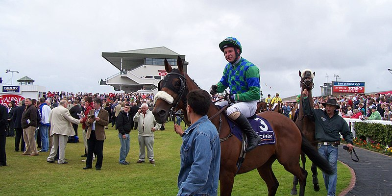 galway festival betting tips