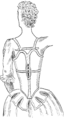 Corset1905 207Fig180.png