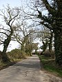 Country lane north of Sustead - geograph.org.uk - 714978.jpg