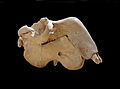 Crâne de Dugong dugon-Musée zoologique de Strasbourg (1).jpg