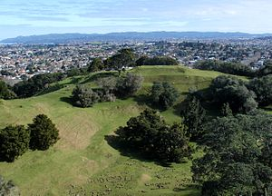 One Tree Hill (New Zealand) - Crater of One Tree Hill, with Auckland city in the background.