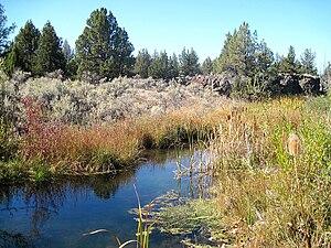 Crooked River National Grassland - Image: Crooked River NG Creek
