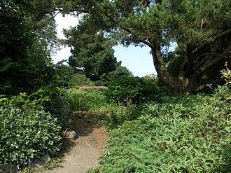 Cruickshank Botanic Garden - Image: Cruickshank gardens