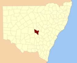 Cunningham NSW