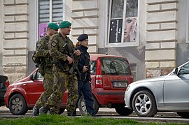 Czech soldiers and police officer 2016 (Brno).jpg