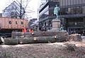 Düsseldorf, Martin-Luther-Platz, Abholzen von zwei alten Bäumen, 2012-02 (4).jpg